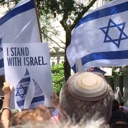 Pro Israel picture